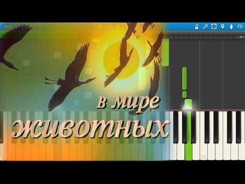 Музыка из телепередачи \