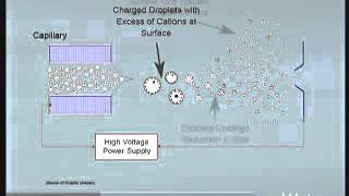 This video describes the hardware components in the ACQUITY UPLC SQ Mass Detector.