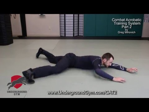 CAT 2 System, Systema Ground Mobility & Movement by Greg Mihovich