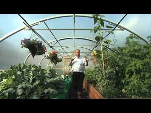 polytunnels - Easy to install and easy to use, irrigation is an option for all sizes of Polytunnels. Not only will it make your life a whole lot easier, an Automatic irrig...