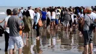 Zandvoort Netherlands  city photos gallery : Baptism at Sea Zandvoort Netherlands 491