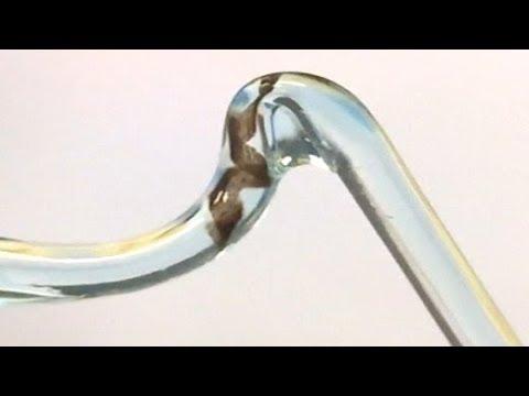 Medizintechnik aus der Schweiz: Mikroschwimmroboter f ...