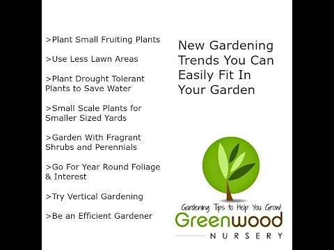 Best Gardening Trends For Your Garden