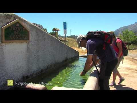 El agua en la Gran Senda de Málaga. Etapas 4 a 10