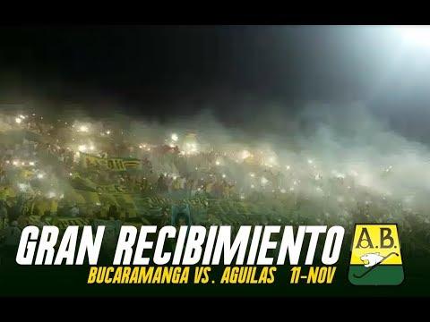 Gran recibimiento + Tapatribuna - B/manga Vs. Aguilas 11/Noviembre - FORTALEZA LEOPARDA SUR 2017 - Fortaleza Leoparda Sur - Atlético Bucaramanga