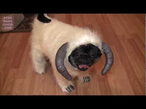 Hoth Wampug