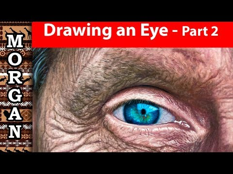 wildlife art wildlife art videos pastel pencil and oil painting