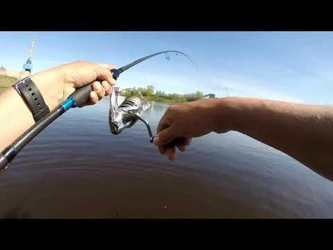 рыбалка на дону в с.щучье