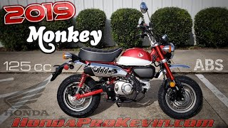 5. 2019 Honda Monkey 125 ABS Walk-around + Startup | Retro Vintage Mini Bike / Motorcycle (miniMOTO)