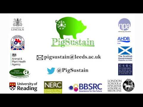 PigSustain: assessing the resilience of the UK pig industry