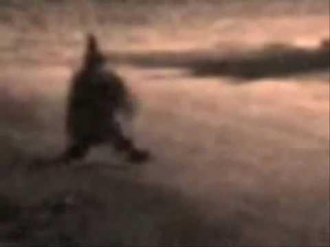Fantasmas,Duendes Y extraterrestres part.2