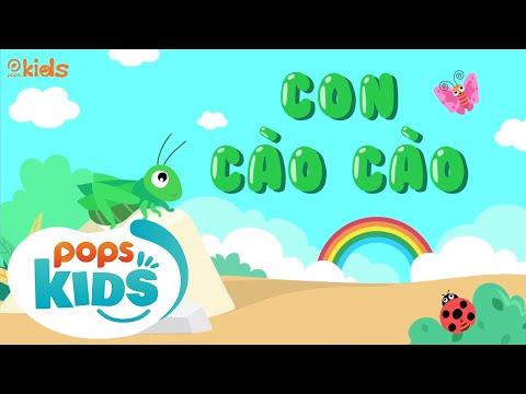 [New] Mầm Chồi Lá Tập 65 - Con Cào Cào | Nhạc Thiếu Nhi Cho Bé | Vietnamese Songs For Kids - Thời lượng: 17:56.
