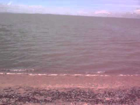 Praia da Barra do Ribeiro