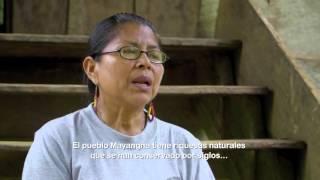 Esquina Comunitaria: Una mirada a nuestros pueblos indígenas y afrodesdecendientes