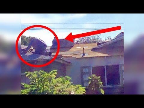 Cada fin de semana miraba a su vecino en el techo, cuando supo lo que hacía pidió ayuda de inmediato