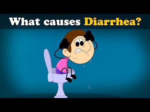 What causes Diarrhea? | #aumsum #kids #science #education #children