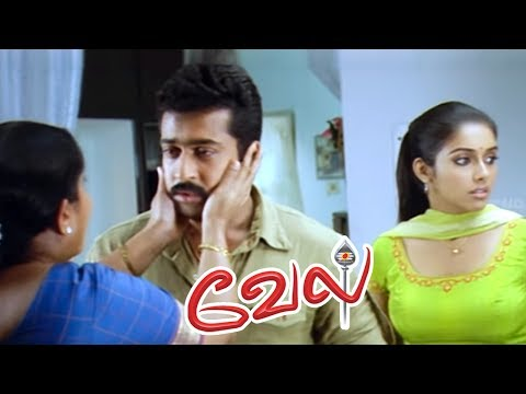 Video Vel Tamil Movie Scenes | Suriya insults Kalabhavan Mani | Surya reveals the truth | Surya Mass Scene download in MP3, 3GP, MP4, WEBM, AVI, FLV January 2017