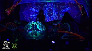 Video Ajja @ Mundo de Oz Festival 2018 MP3, 3GP, MP4, WEBM, AVI, FLV September 2018