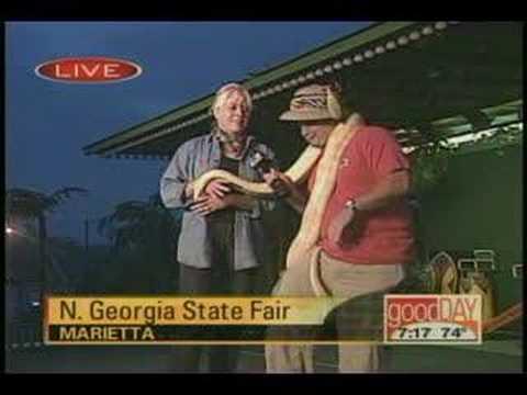 Snake attacks reporter on LIVE TV