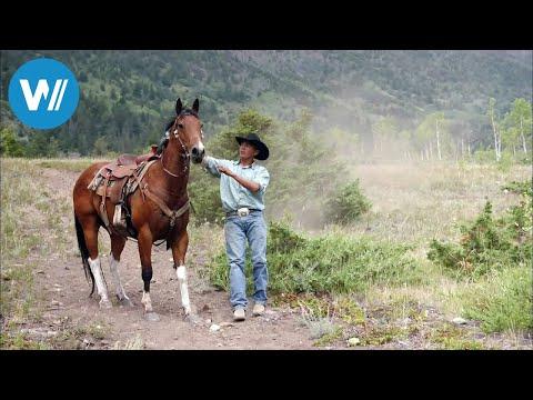 Kanada: Indianer schreiben Geschichte (360° - GEO R ...