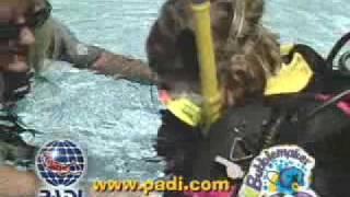Diving Courses in Delphinus School