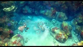 Watch A Turtle's Tale: Sammy's Adventures (2010) Online Free Putlocker