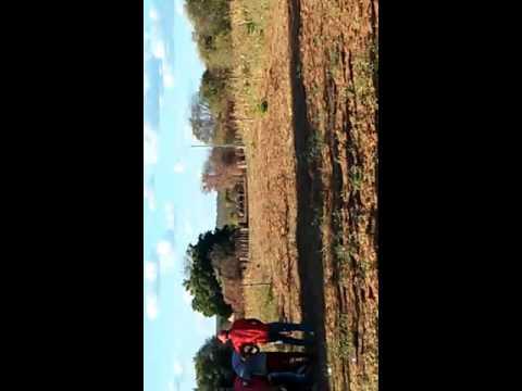 Corrida de cavalo em brejo do Piauí