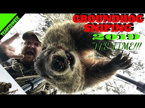Groundhog Hunting With .17 Hmr And Predatortactics Tripod