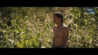 El Ardor trailer