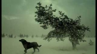 Download Lagu Balkansky - Silence Mp3