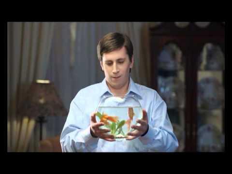 Глицин. Рыбка (квартира)