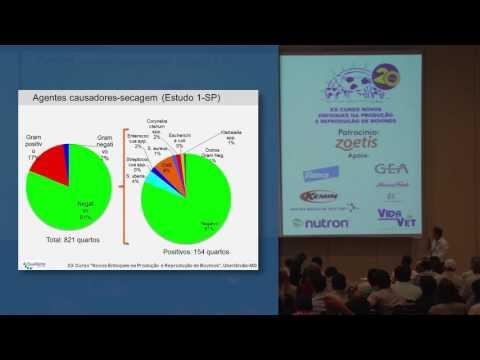 Eficácia do ceftiofur (Spectramast DC) para tratamento de vaca seca