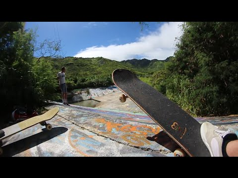 SECRET Jungle Skate Spot!