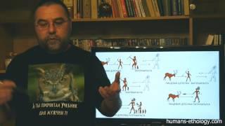 Жениться или не жениться — Новоселов Олег — видео