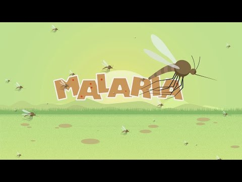 Malaria Animated