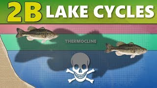 Video INTERMEDIATE GUIDE TO BASS FISHING: Part 2B - Lake Cycles (Thermocline/Turnover) MP3, 3GP, MP4, WEBM, AVI, FLV Agustus 2018