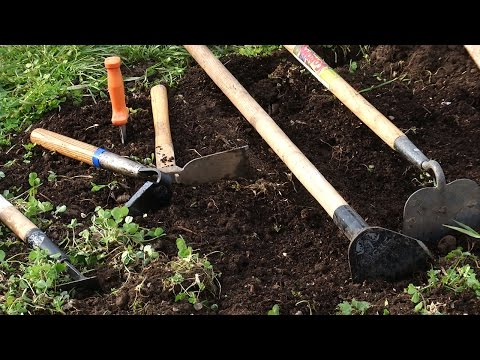 Choosing the Right Garden Tools for Your Vegetable Garden