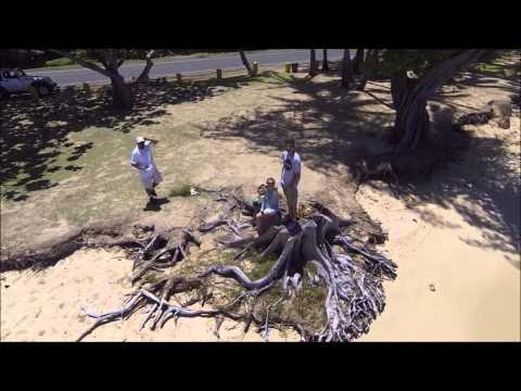 Waialua Drone Video