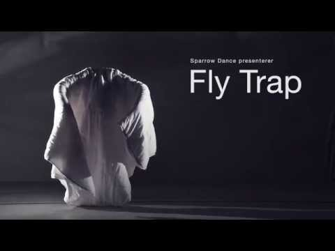 Fly Trap Trailer