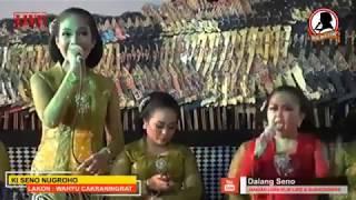 Video Marai Ngakak Elisha Orcarus Alasso vs Ciblek - Grajagan Banyuwangi (part 2) MP3, 3GP, MP4, WEBM, AVI, FLV Maret 2019