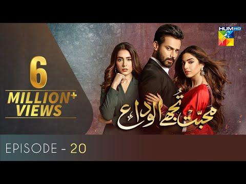 Mohabbat Tujhe Alvida Episode 20 | Eng Sub | Digitally Powered By Master Paints | HUM TV Drama