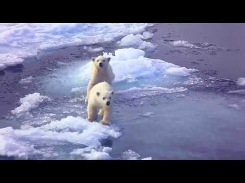 Silversea Expeditions - Polar