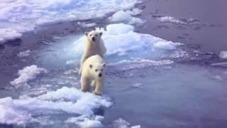 Silversea Expeditions - Polar
