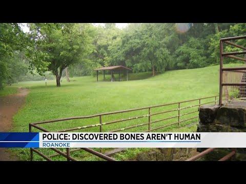 Bones found in Roanoke not human