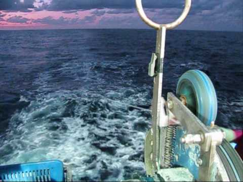 Tuna fishing aboard F V Demi maddison