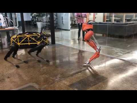 Robot playdate