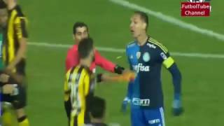 Peñarol x Palmeiras 2-3 luta Peñarol x Palmeiras 2-3 pelea libertadores 2017 Goles: Affonso (peñarol) Arias (peñarol) William (palmeiras) William (palmerias) ...