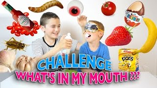 Video WHAT'S IN MY MOUTH ? CHALLENGE - DEGOUTANT vs DELICIEUX MP3, 3GP, MP4, WEBM, AVI, FLV Oktober 2017