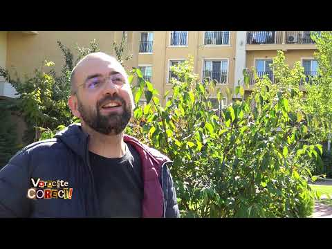 Vorbeşte corect! - invitat comediantul Viorel Dragu: cu umor, despre limba română (@TVR1)