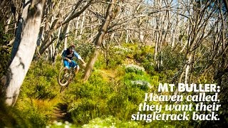 Mount Buller Australia  city photo : Mt Buller: Heaven called, they want their singletrack back